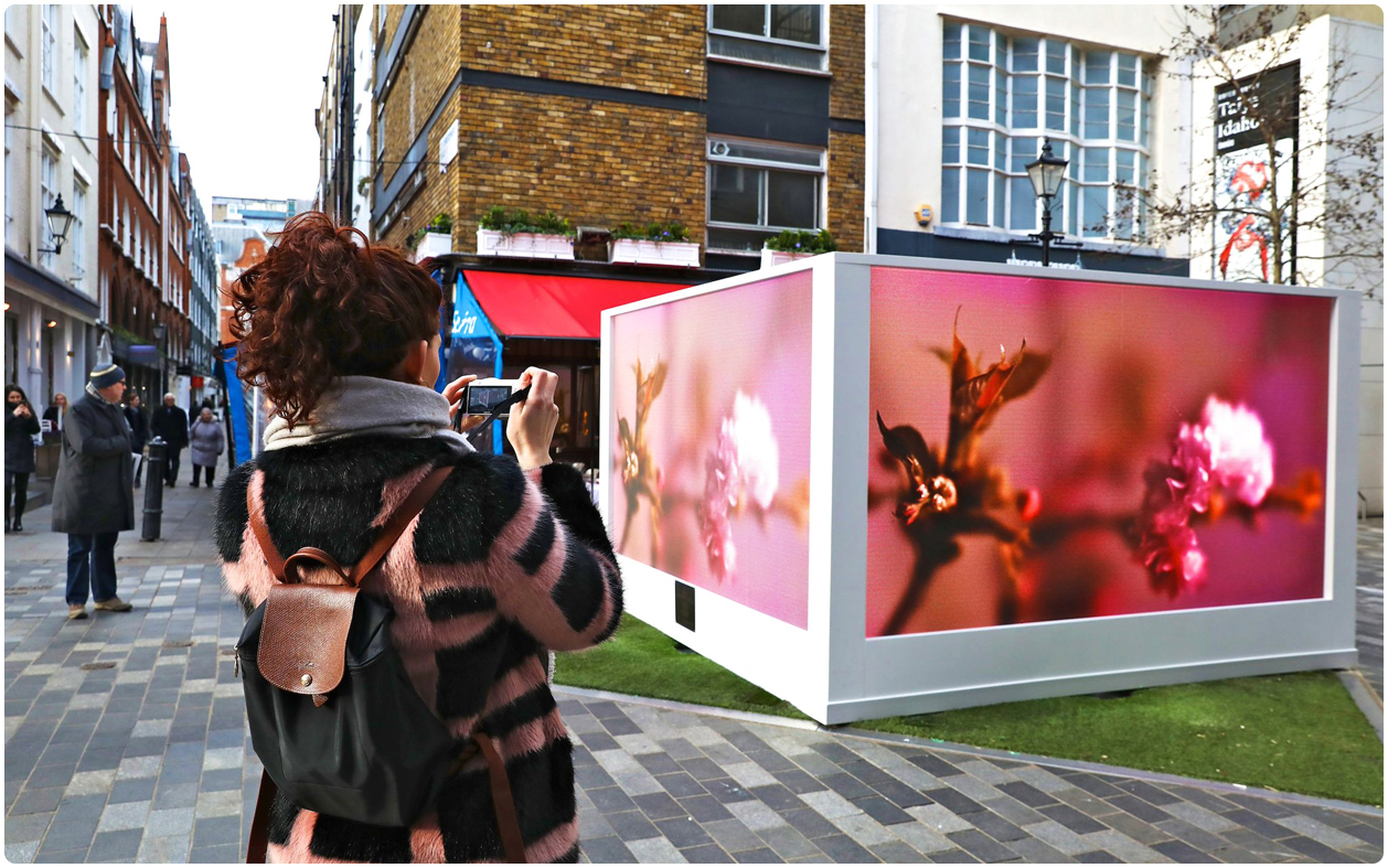 Spring Garden LED Screen Activation | St Christopher's Place